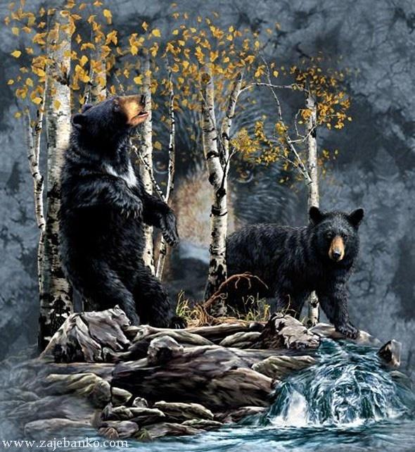 Optička varka skriveni medvjed na slici