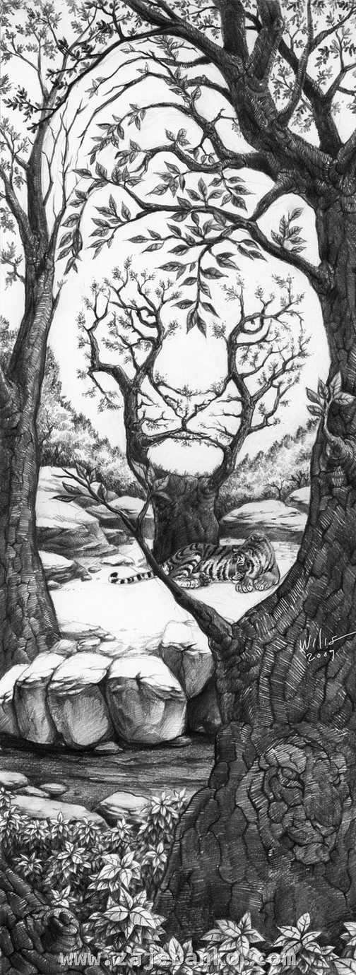 Slika sa skrivenim tigrovima - optička iluzija kamuflaže