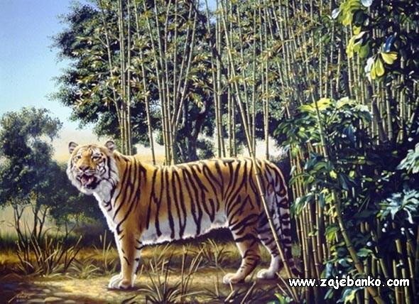 Skriveni tigar - optička varka