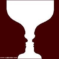 Višeznačne optičke iluzije