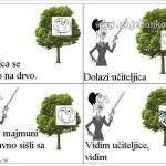 Mali Ivica - zbirka viceva