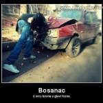 Vicevi o Bosancima