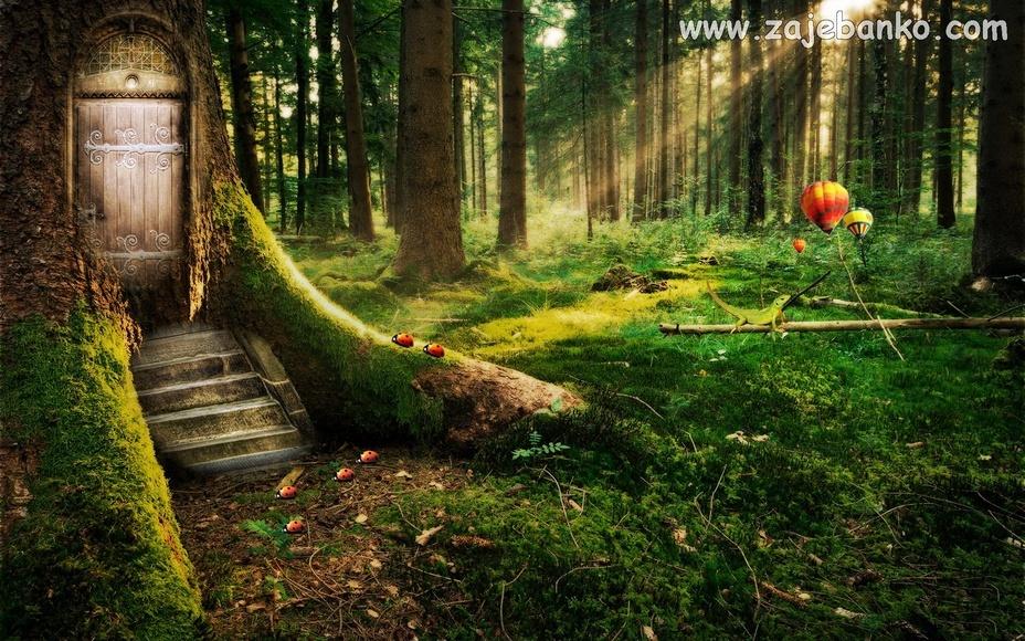 Šumska idila