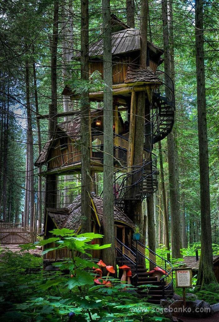 Prekrasne kućice u krošnji drveta