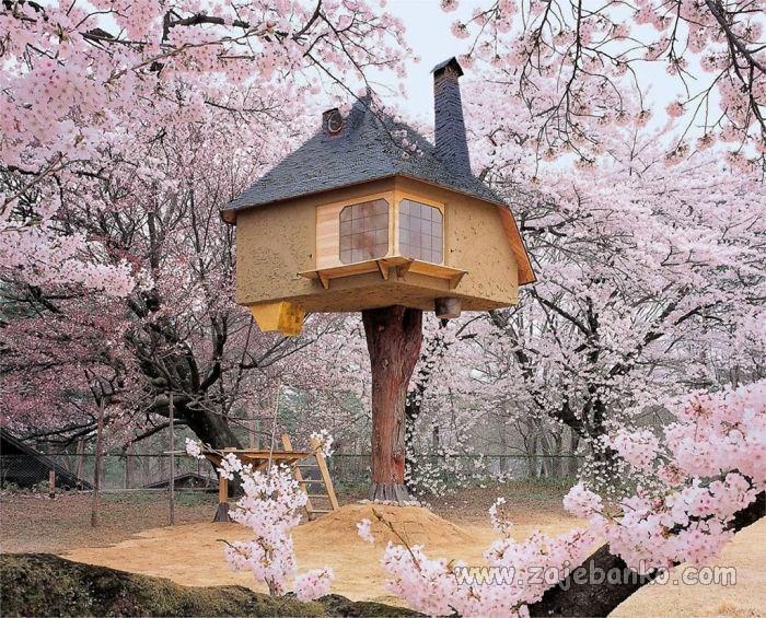 Kućice na stablu - simbol slobode i harmonije s prirodom
