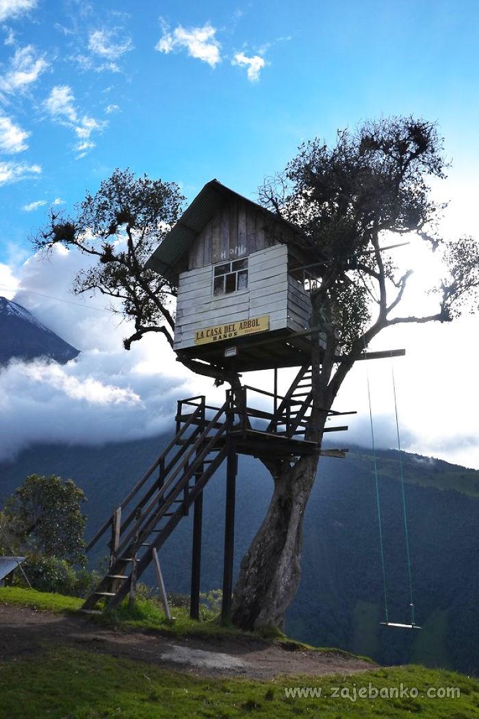 Prekrasne kućice na stablu