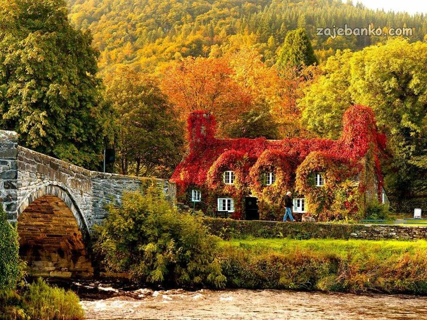 Najljepse Slike Jeseni Carolija Jeseni U Prirodi Zajebanko
