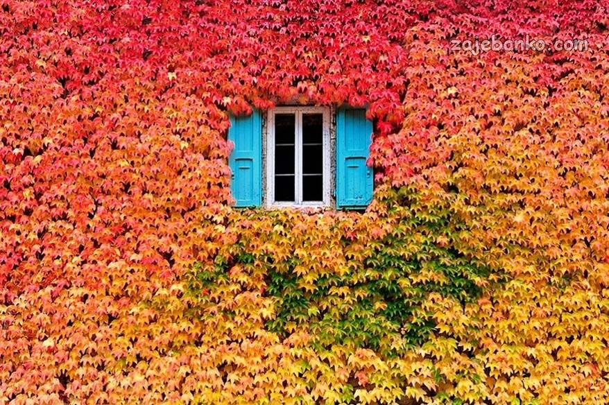 Najljepše Slike Jeseni čarolija Jeseni U Prirodi Page 3