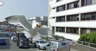slike s Google Street Viewa