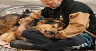 pas čovjekov najbolji prijatelj