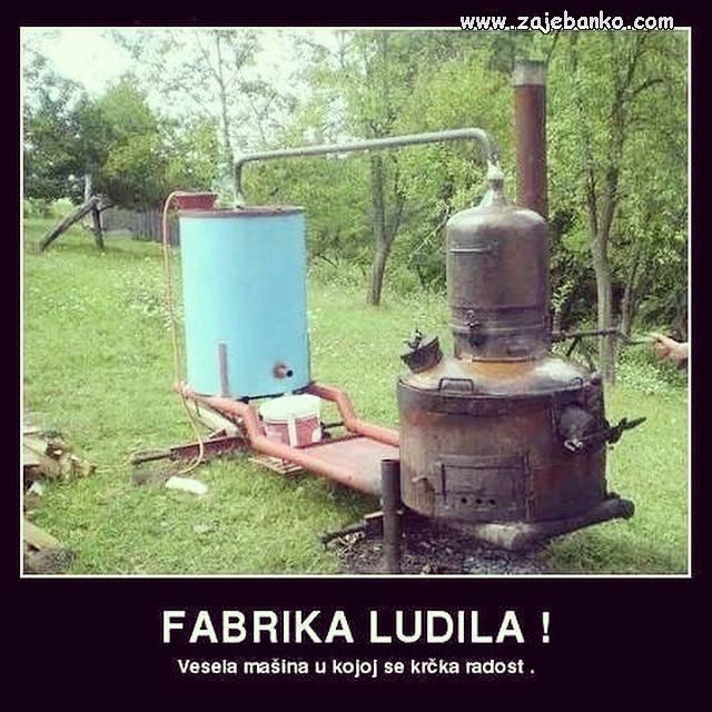 Cuga smiješne slike - Fabrika ludila