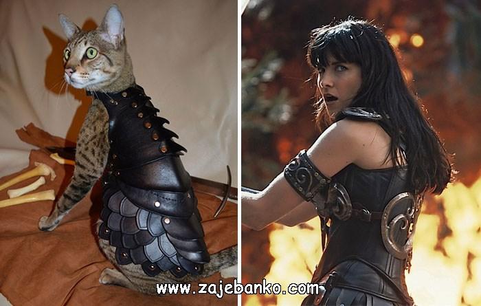 Mačka poput Xene, Princeze ratnice