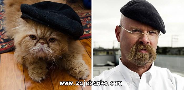 Mačka poput Jamiea iz Mythbustersa