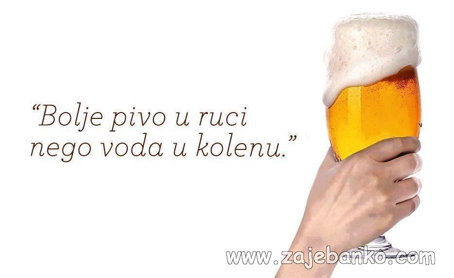 Smiješne izjave u slikama - pivo u ruci