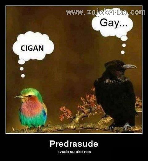 životinje predrasude