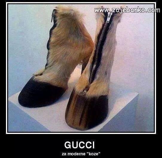 Demotivacijski posteri - Gucci za moderne koze