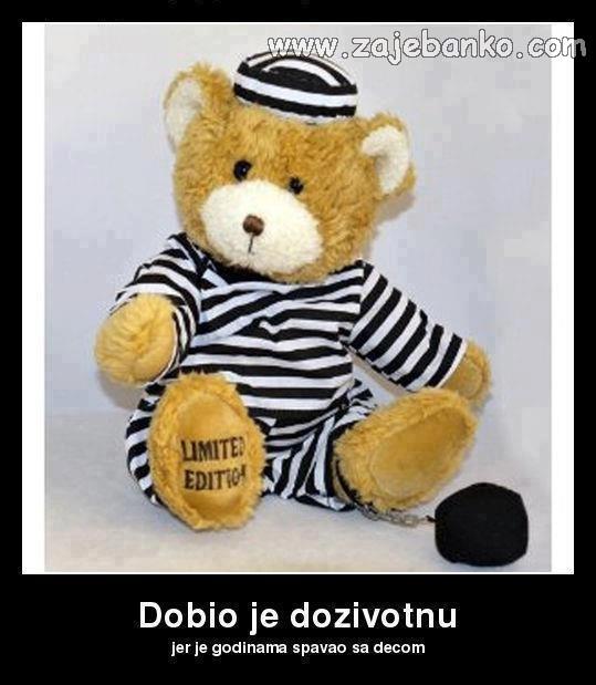 Smiješne slike životinja - medo u zatvoru