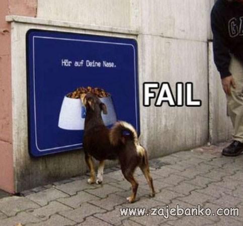Smiješne slike pasa - lažna zdjelica za hranu