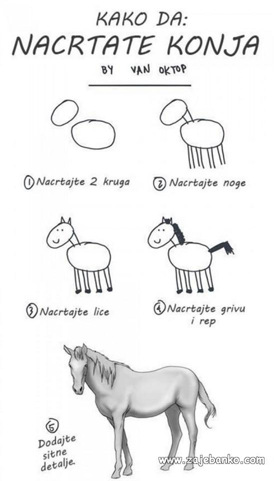 Smiješne životinje - konj