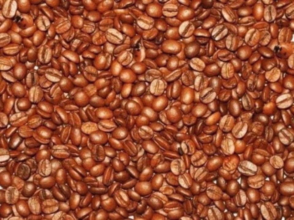 Mozgalica: zagonetna zrnca kave