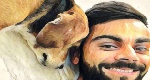 Dirljiv video: Pas ne zaboravlja ljubav