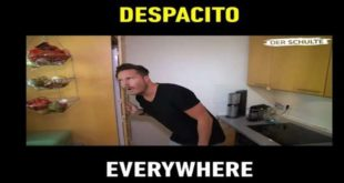 Despacito - hit Luisa Fonsija