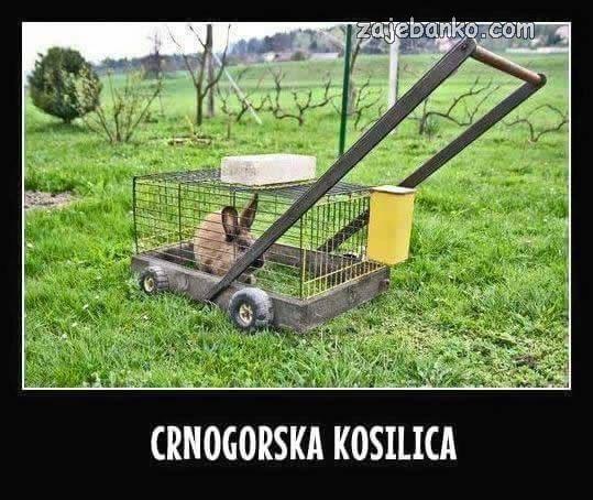 crnogorska kosilica