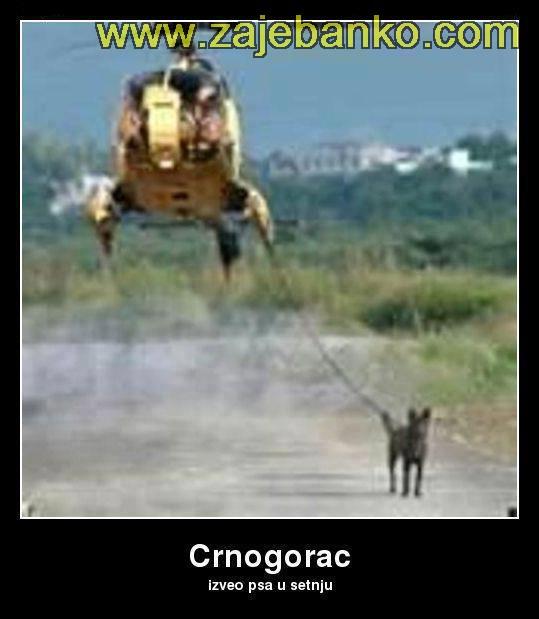 Crnogorac izveo psa u šetnju