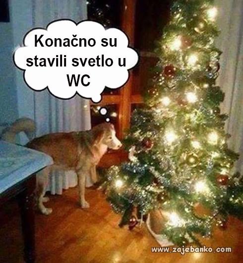 pas i božićno drvce