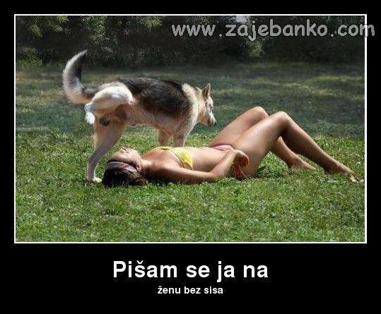 pas obilježava svoj teren smiješna slika