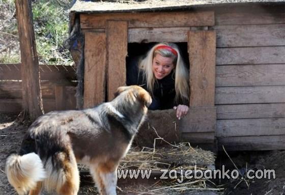 pas pametniji od plavuše & pametniji popušta