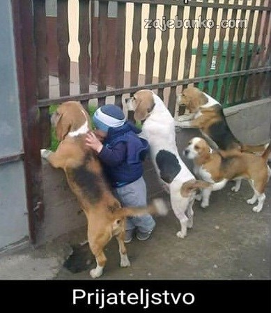 psi & djeca prijateljstvo