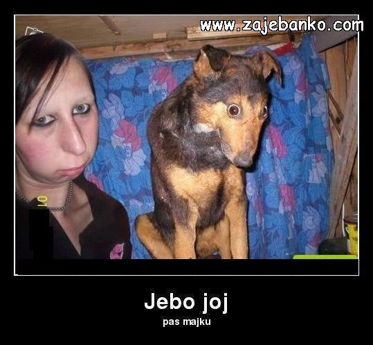 ružan pas smiješna slika