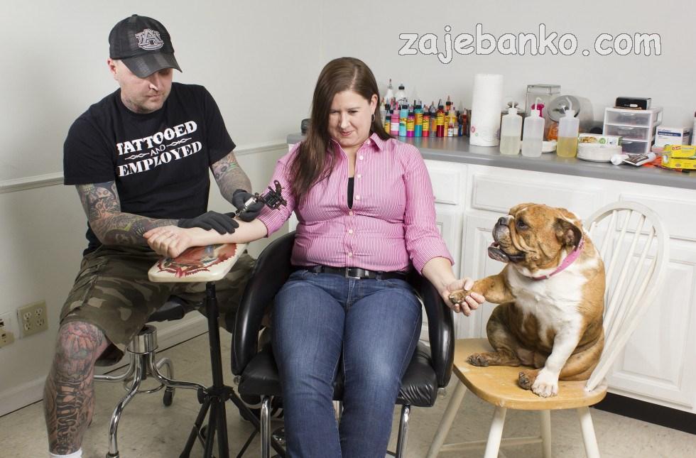 smiješne slike pasa - pas daje podršku